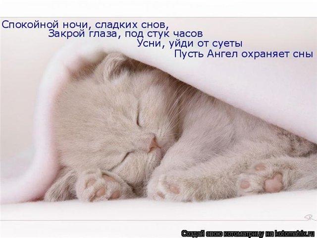 доброй ночи картинки скачать
